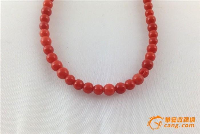 天然momo红珊瑚圆珠项链 不议价