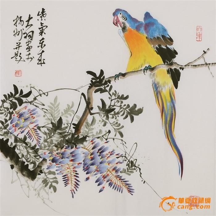 名家陈大羽风格国画鹦鹉紫藤字画手绘四尺斗方