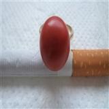 红珊瑚金戒指 4.3克